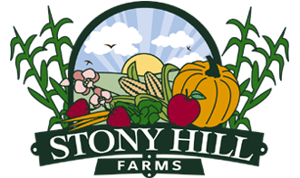 Stony Hill Farm Market, Maze Fun Park, Pick-Your-Own Farm, and Gardens (Chester, NJ and Long Valley, NJ)